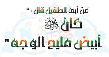تحميل انشودة محمد نبينا بنوره هادينا mp3