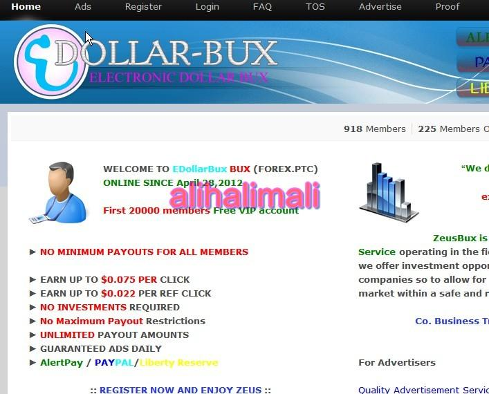 edollar-bux بدون ادني 361089747.jpg
