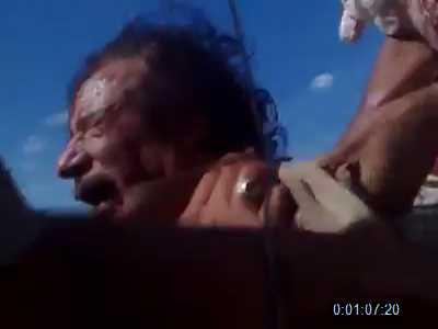 ألقذافي الرجل الحديدى ..... والقذافى النمر الورقي 593984171