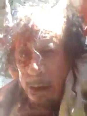 ألقذافي الرجل الحديدى ..... والقذافى النمر الورقي 622722317
