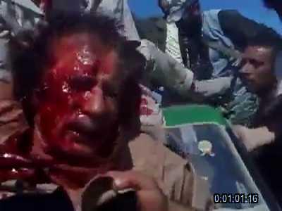 ألقذافي الرجل الحديدى ..... والقذافى النمر الورقي 973075995