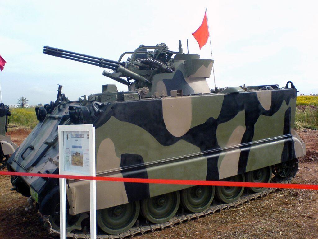 القوات المسلحة الملكية المغربية 568307022