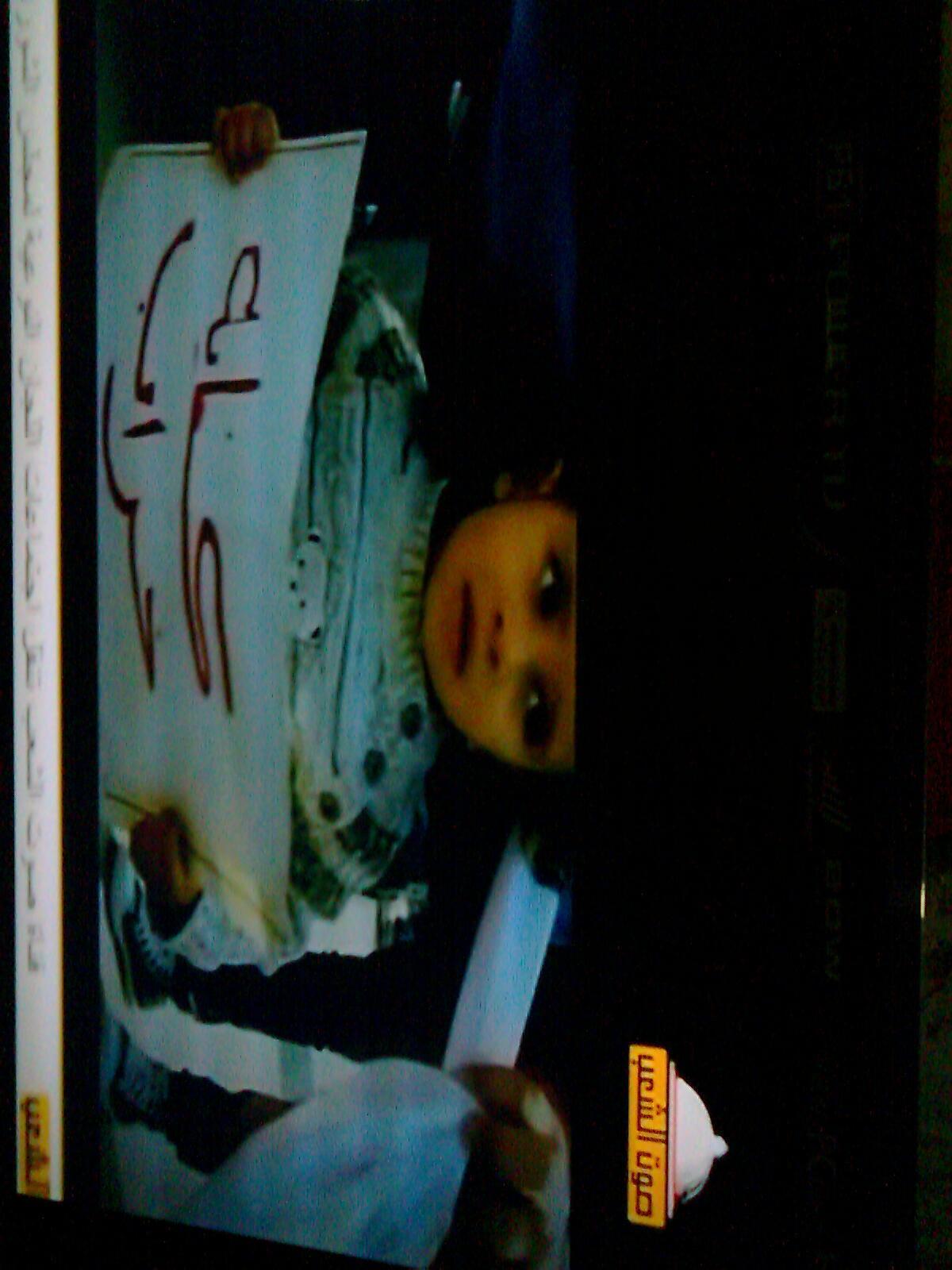 عادت قناة صوت الشعب من جديد للبث بعد قرار السيد محمد مرسي بعودة مجلس الشعب