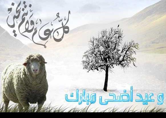 كل ما يتعلق به من احكام العيد ادخل اخى الحبيب