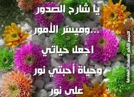 الفيلم التيلوجى Bujjigadu 2008 لبراباس مترجم عربى - صفحة 2 729684706