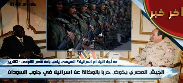 الجيش المصري يخوض حرباً بالوكالة في جنوب السودان
