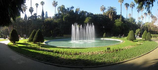 من اجمل حدائق العالم .. 800539388.jpg
