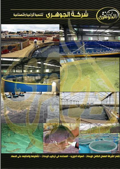 الاستزراع السمكي المكثف شركة الجوهري 132603172.jpg
