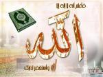 زهرة الاسلاميات