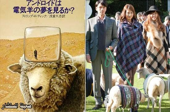 أريتو ,حالك, حال الخرفان , في اليابان