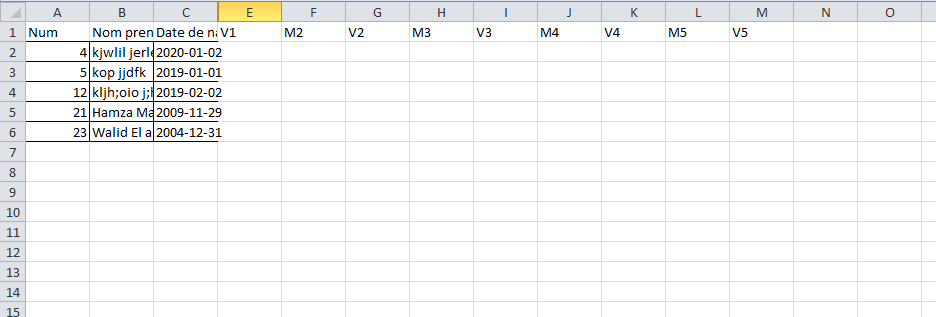 a excel file